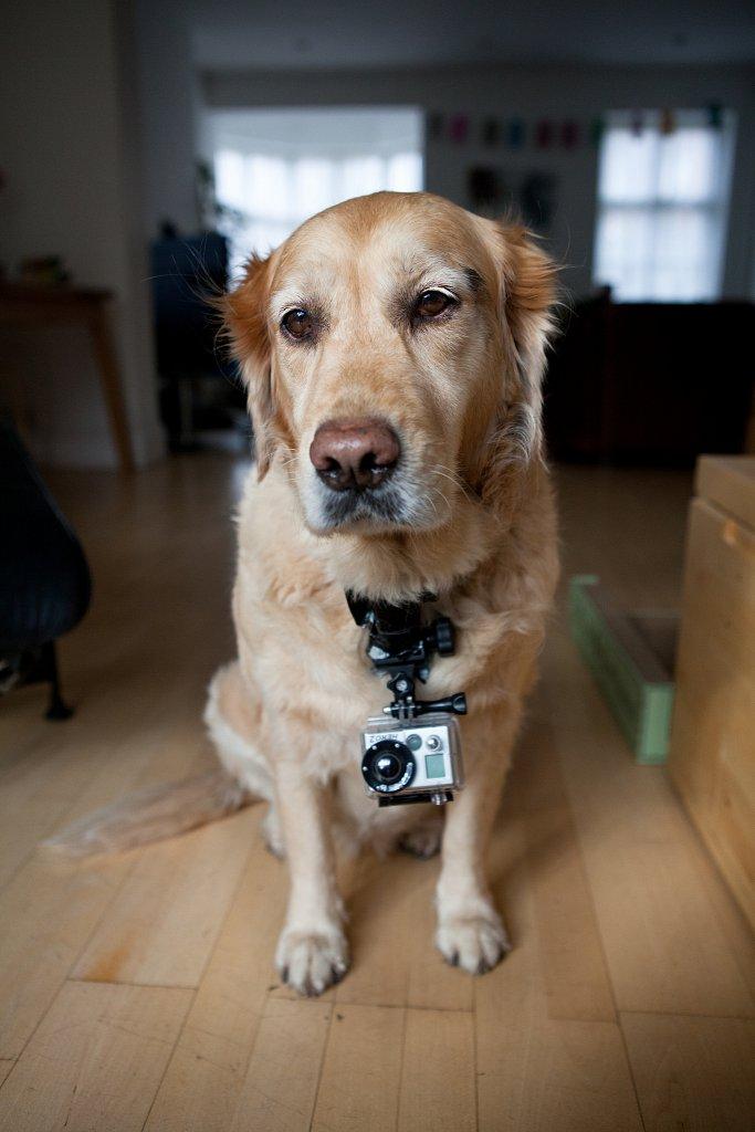 Cosmo/Camera operator for a music video